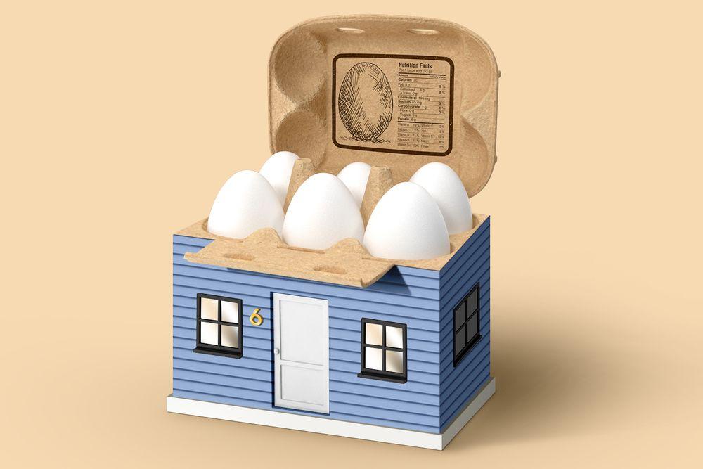 Egg carton in a house