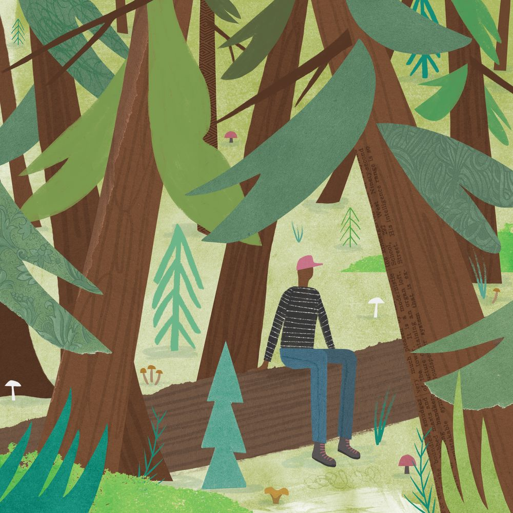 An illustration of a guy sitting on a log in the woods