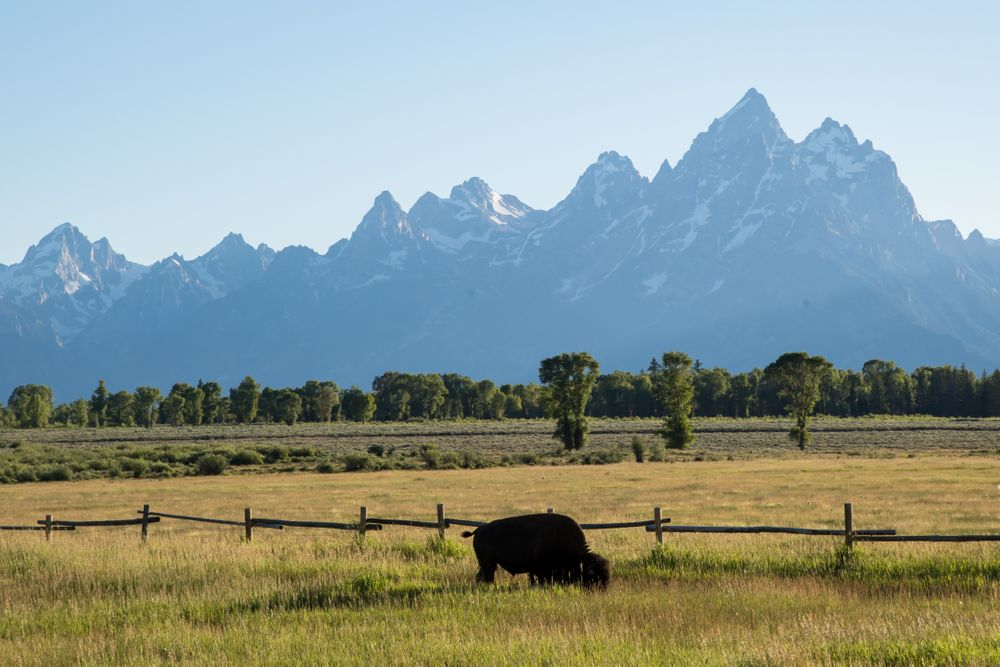 The Teton Range, a mountain range of the Rocky Mountains, is seen from J...