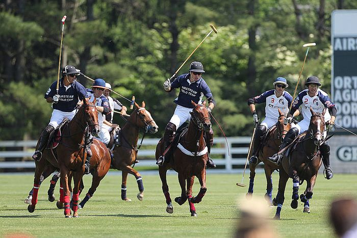 Polo in Connecticut