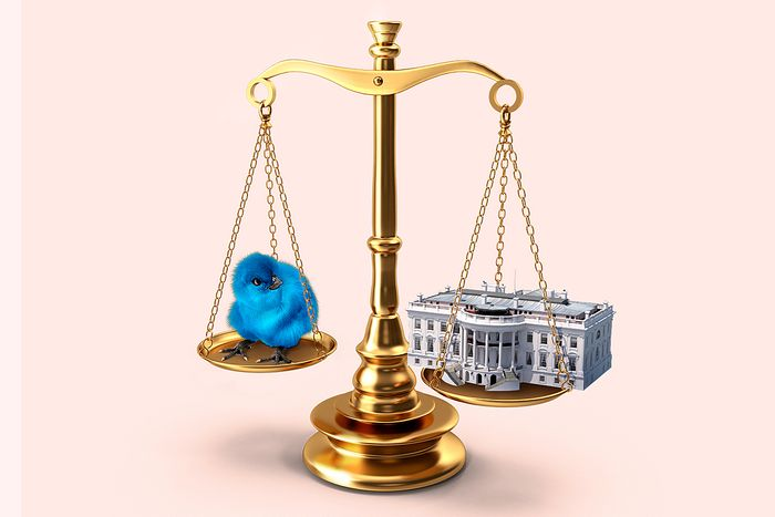 Social media executive order