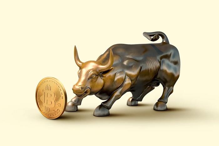 Bull with crypto