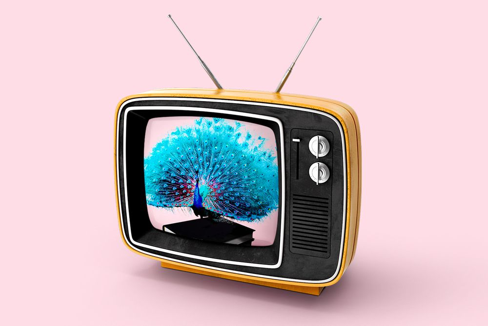 Old TV with a peacock